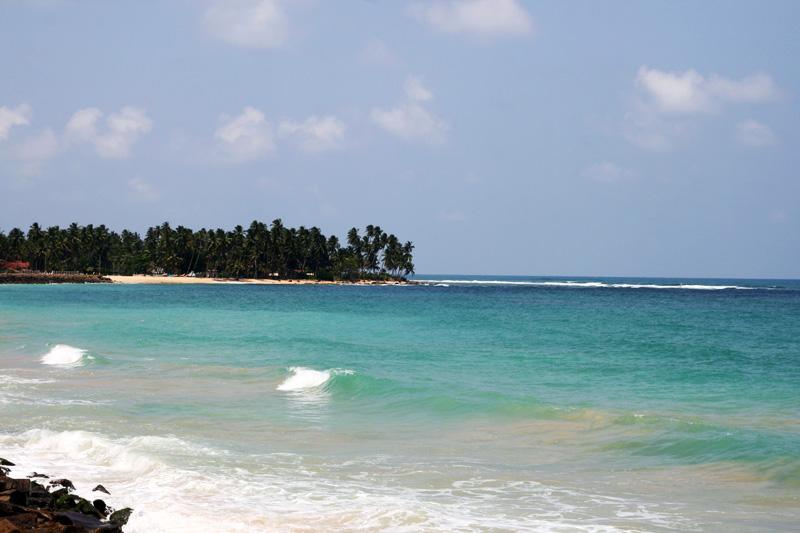 Туроператоры по Шри-Ланке! Фото Шри-Ланки