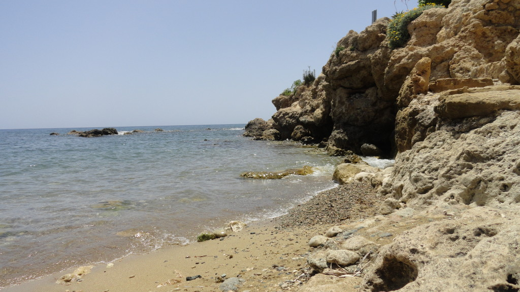 Туроператоры по Кипру