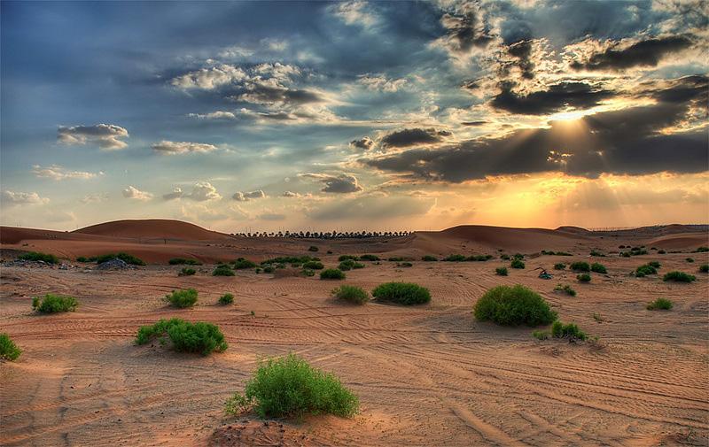 desert010510