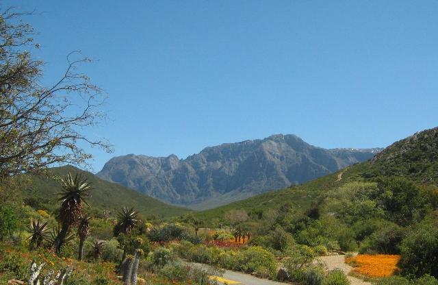 Фото ЮАР